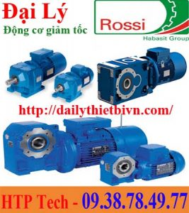 động cơ giảm tốc Rossi